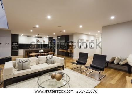 Big modern living room, kitchen and backyard - stock photo