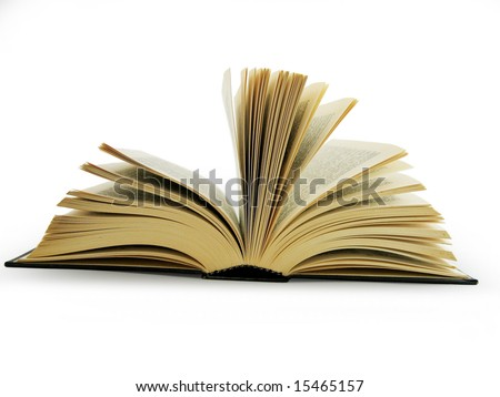 Big open book - stock photo