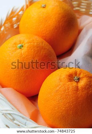 big oranges on basket - stock photo