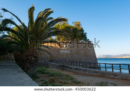 Big palm in the old town of Chania, Crete, Greece. - stock photo