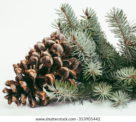 big pine tree cone like decoration to holiday card for Christmas with copyspace macro, happy new year - stock photo