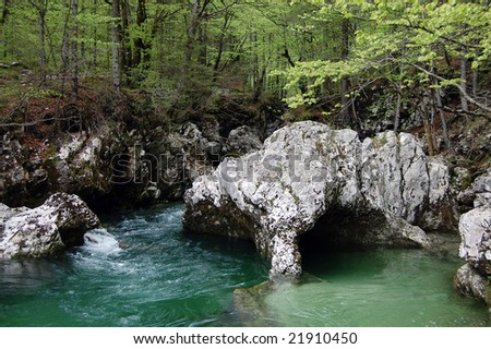 Big rock in a shape of an elephant head in a green forest stream (Slovenia) - stock photo