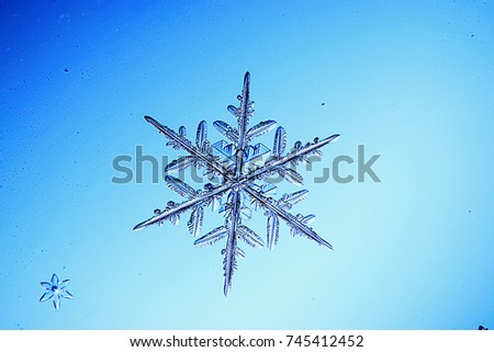 Big snow crystals on a blue background
