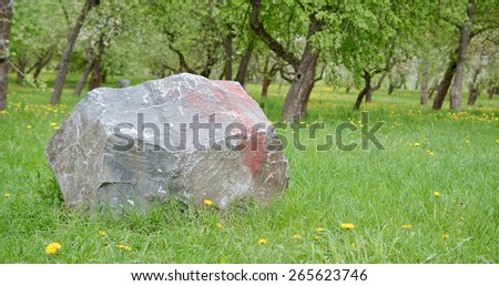Awesome Big Stone In Garden