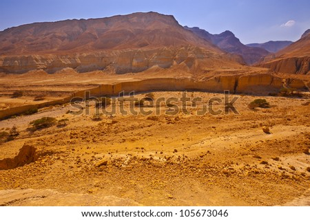 Big Stones in Sand Hills of Samaria, Israel