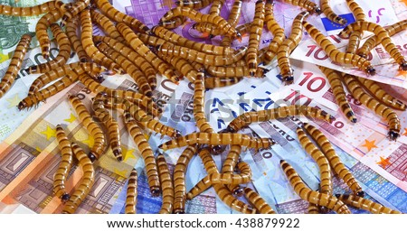 Big ugly worms crawling over euro banknotes background, economic crisis concept - stock photo