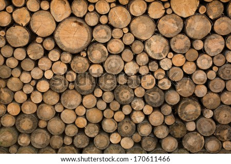 Big wall of stacked wood logs showing natural discoloration - stock photo