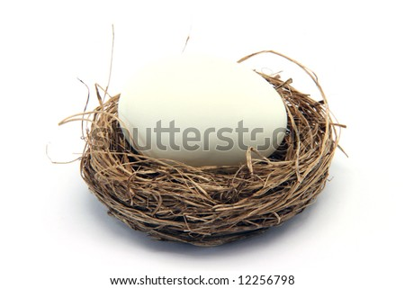 big white egg in a nest isolated on white background - stock photo