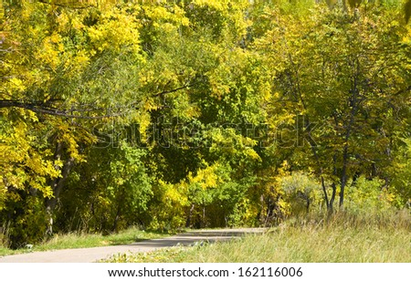 Bike path leads by brilliant green and yellow autumn foliage on the Colorado prairie - stock photo