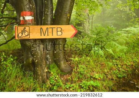 Bike route signboard and hiking guide mark on beech three - stock photo