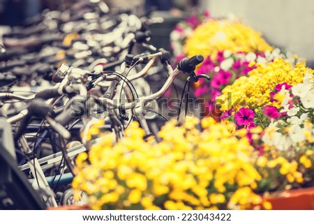 Bikes on parking and flowers in Amsterdam. - stock photo