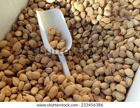 Bin filled With Almonds in their shells.