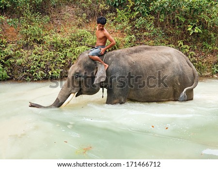 BINTAN ISLAND, INDONESIA - MARCH 28: Young man bathing his elephant in the forest lake on the Bintan island on March 28, 2012  in Bintan Island, Indonesia. - stock photo