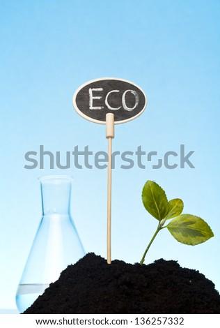 bio farm with organic plants concept - stock photo