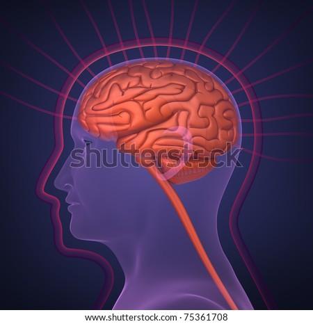 Biofield and human brain - stock photo