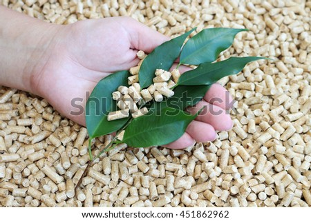 Biofuels.Alternative biofuels from sawdust , wood pellets for soil, and green leaves in the hand - stock photo
