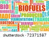 Biofuels or Biofuel Clean Energy as a New Concept - stock vector