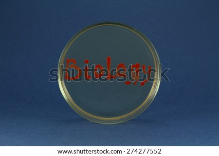 Biology word inscription by living bacterial colonies on a petri dish agar surface - stock photo