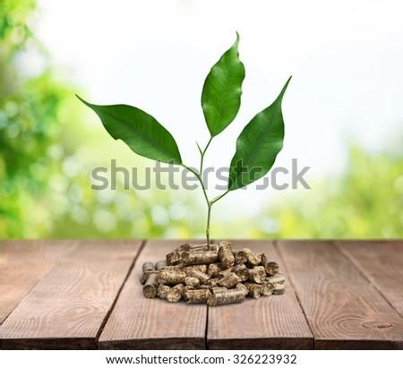 Biomass pellets. - stock photo