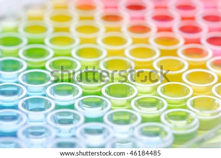 biomedical research: close up of Enzyme-linked Immunospot Assay plate - stock photo