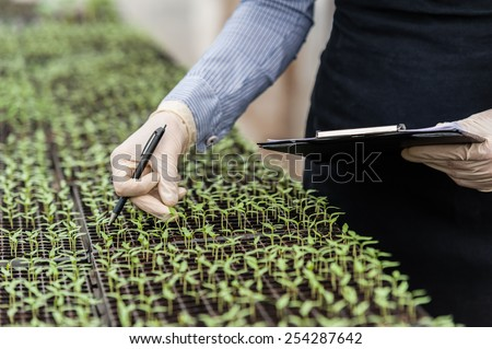 Biotechnology woman engineer with a clipboard and pen examining a plant leaf for disease! - stock photo