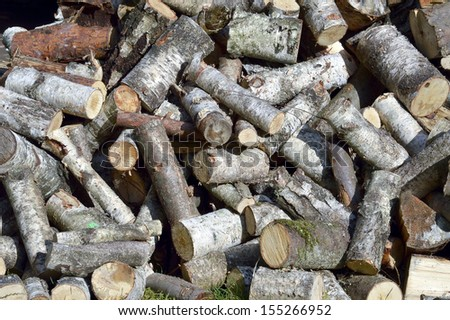 Birch and pine wood - firewood for the winter - stock photo