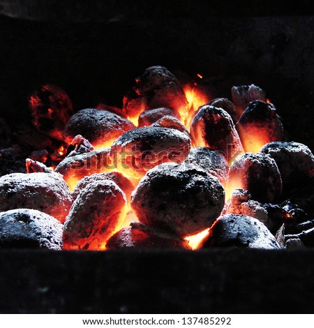 Birch coals burn - stock photo