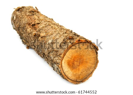 Birch logs isolated on the white background. - stock photo
