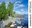 Birch on the stony shore of Ladoga lake, Karelia, Russia - stock photo