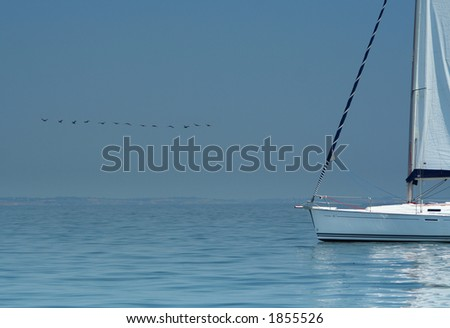 Bird above silent water and white yacht. It is a beautiful peace picture. Silence and rest. The world. The warm sea. - stock photo
