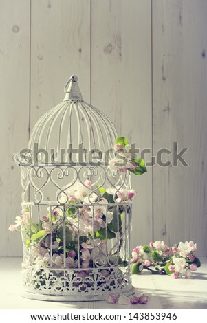 Bird cage filled with apple tree blossom with vintage effect - stock photo