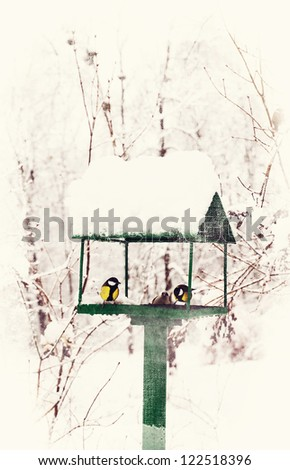 bird feeders in the winter snow-covered park - stock photo