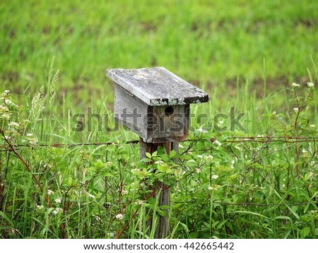 Bird house on a fence post - stock photo