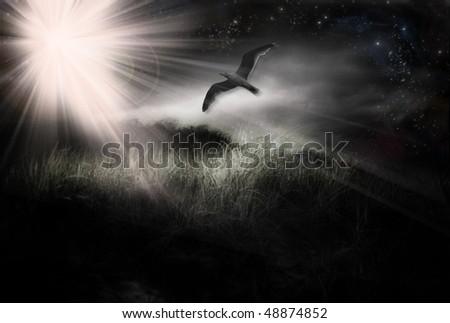 Bird in Flight grunge abstract landscape - stock photo