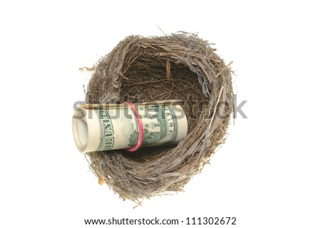 Bird nest and a roll of dollars isolated on white background
