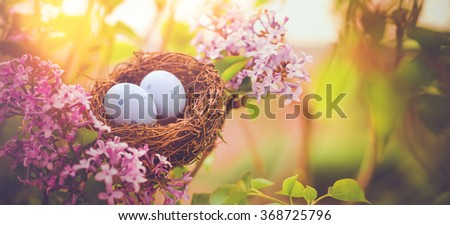 Bird nest in a flowering tree with easter eggs for Easter - stock photo