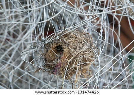 bird nest in metal wire construction. - stock photo