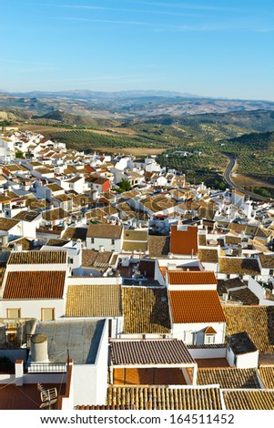 Bird's Eye View on the Red Tiles of the Spanish Town