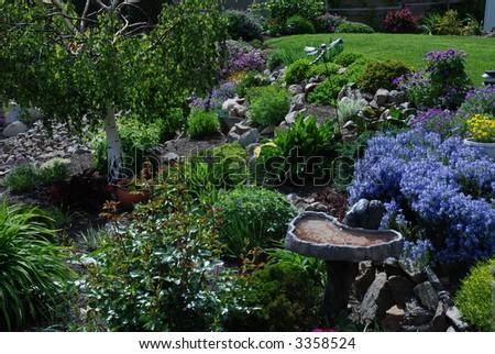 Birdbath and Garden - stock photo