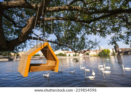 Birdhouse hanging from tree over river - stock photo