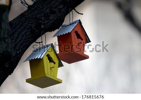 Birdhouse hanging on a tree - stock photo