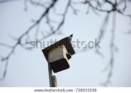 Birdhouse With Starling On The Roof. Spring Bird Singing Songs In The Garden