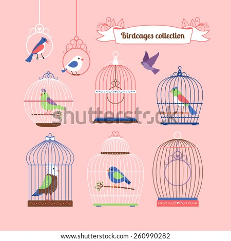 Birds and birdcages cute colored illustration