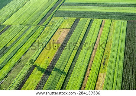 Birds Eye View of the Fields and Agricultural Parcel. Aerial Views. - stock photo