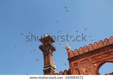 Birds hovering over Badshahi Mosque Minarets - stock photo