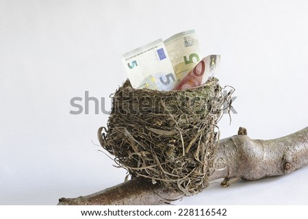 Birds nest with low denomination currency suggesting the start of a nest egg. Saving for something special such as retirement. The nest rests on a branch.