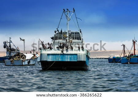 birds on board vessels fishing ship