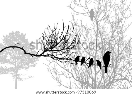 birds silhouette on wood branch - stock photo