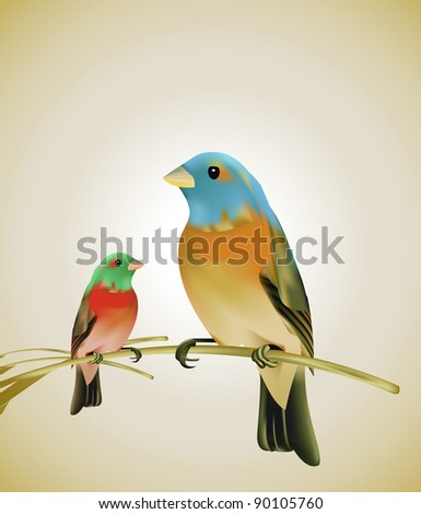 Birds sitting on a branch - stock photo