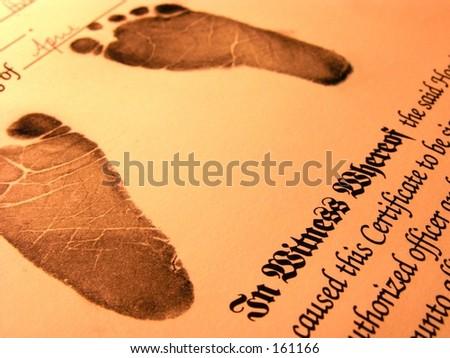 Birth certificate - stock photo